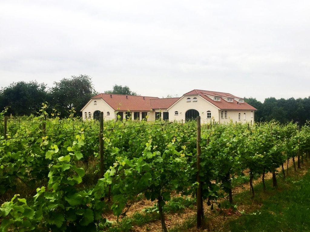 Bezoek aan het Nederlands Wijnbouwcentrum in Groesbeek